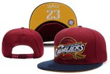 NBA Cleveland Cavaliers[Ref. 01]