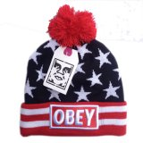 Gorro OBEY USA Flag