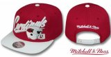 Gorra Chicago Cardinals