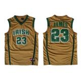 LeBron James, St. Vincent St. Mary Irish [Brown]
